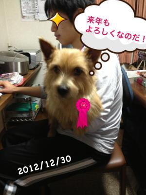 20121230010646314.jpg